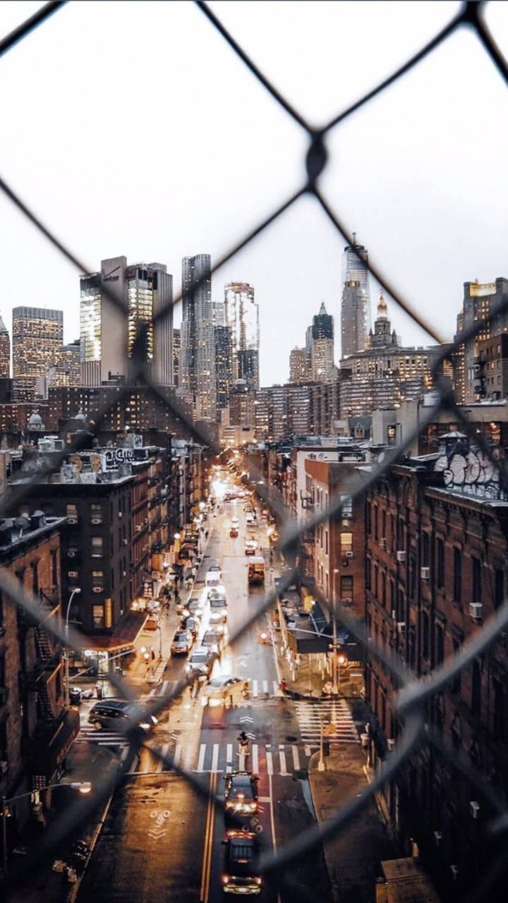 Linked city views