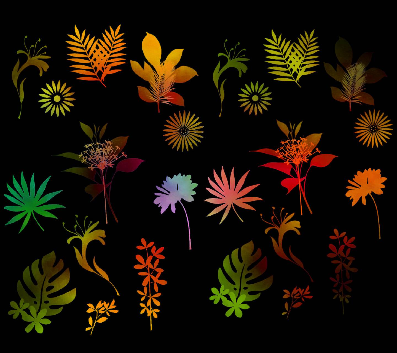Nature Color 5b