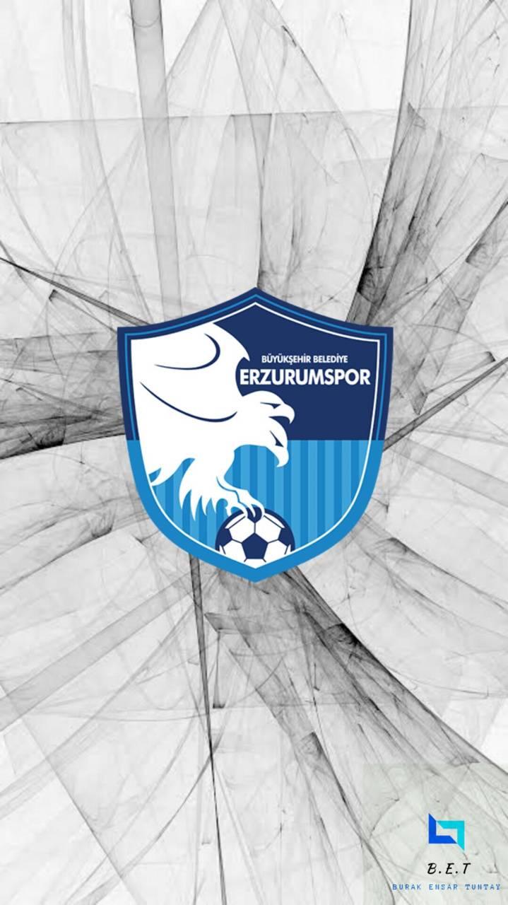 ErzurumsporWallpaper