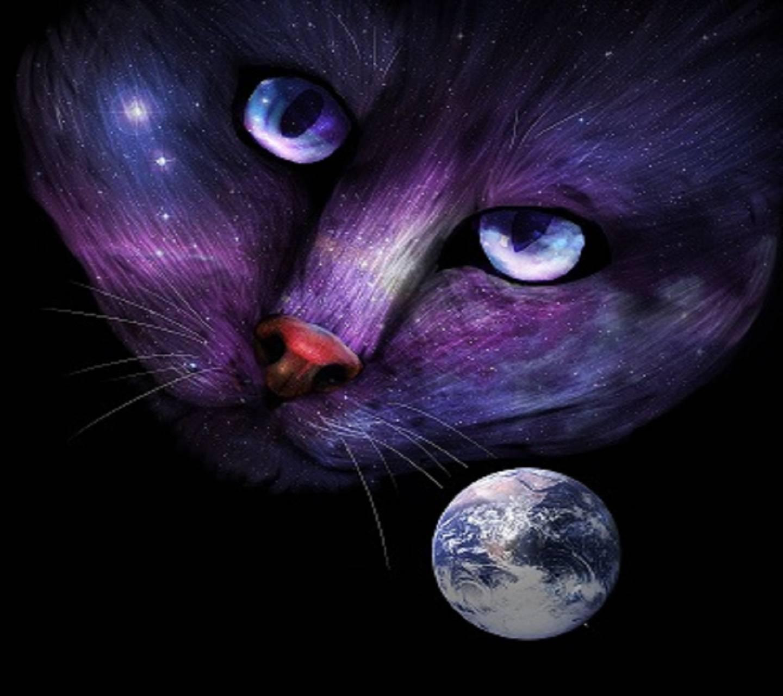 Purple Cat Moon
