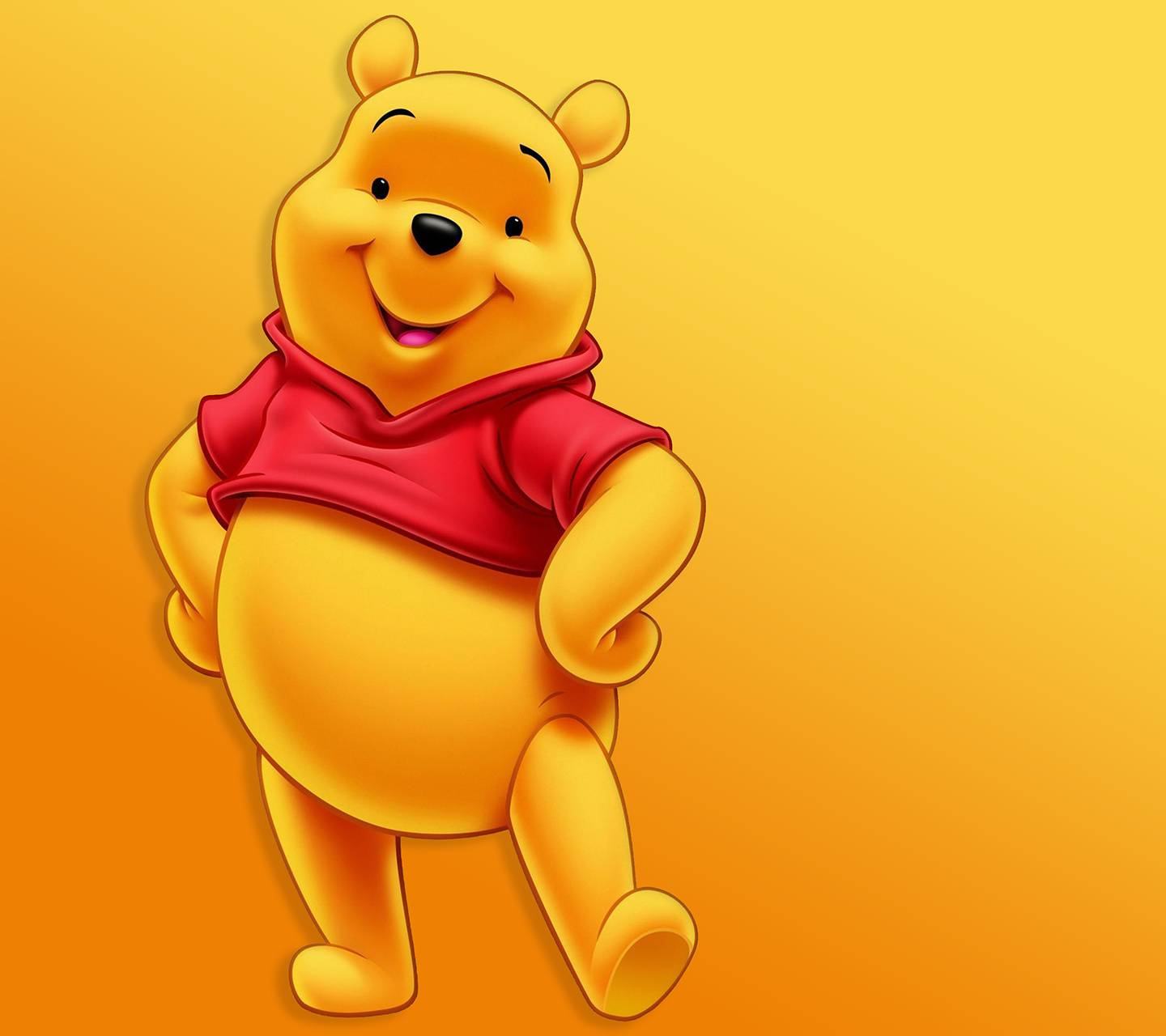 It is a photo of Handy Pooh Bear Images