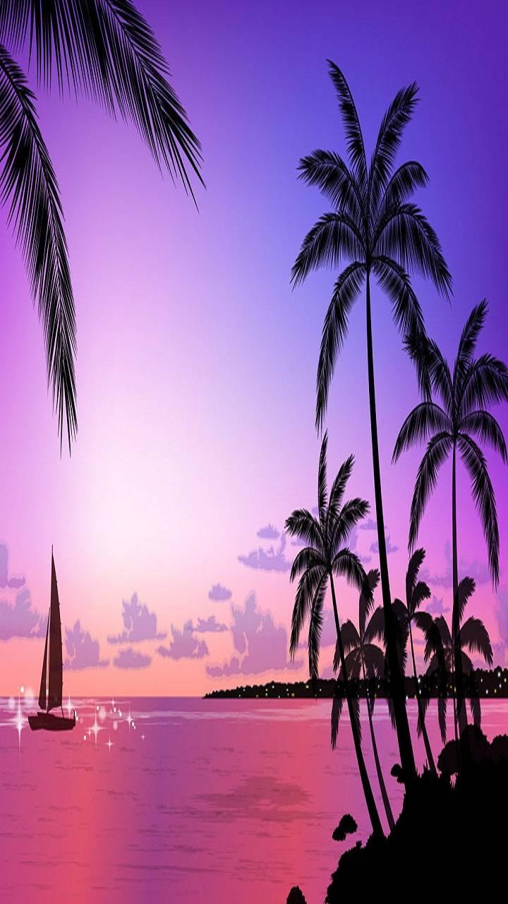 Tropical Sunser