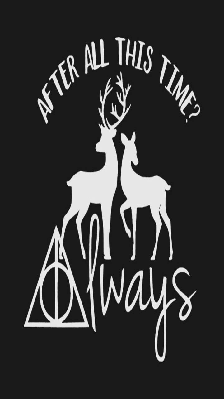 Always Harry Potter Wallpaper By Darkamethystalpha 54