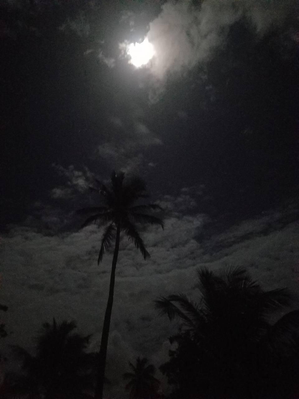 Noche El Bajo