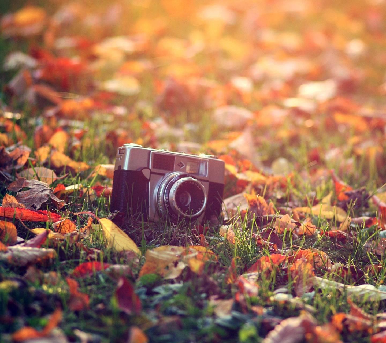 Camera in Autumn