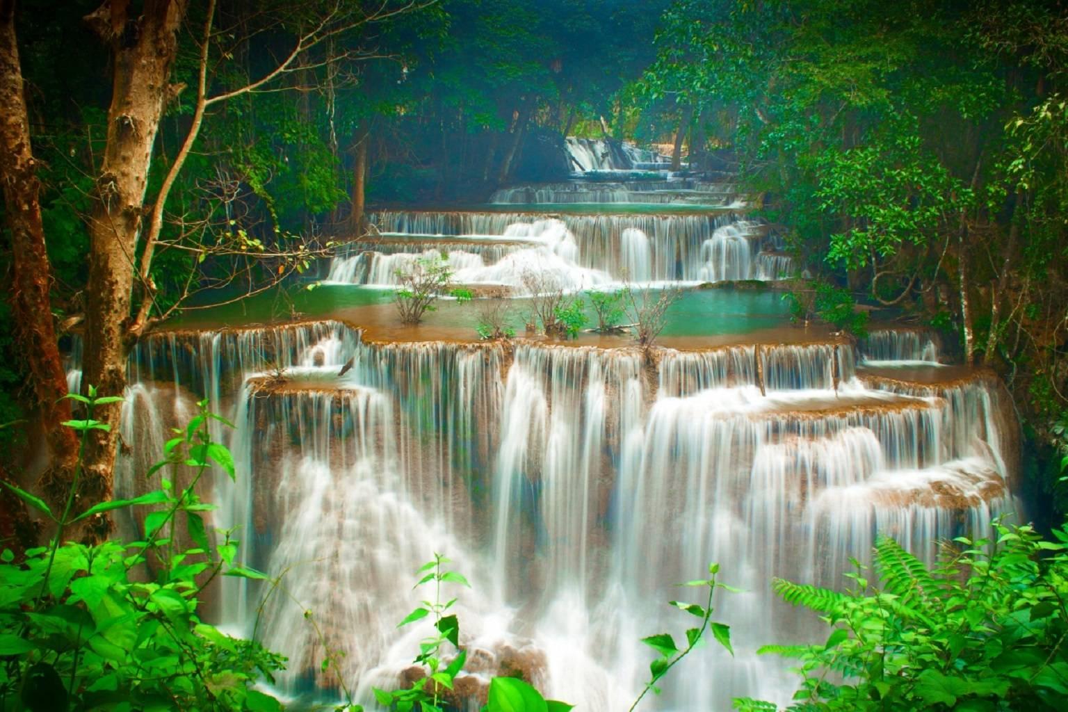 Thailand Tropics