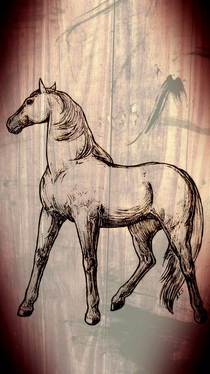 The Noble Horse