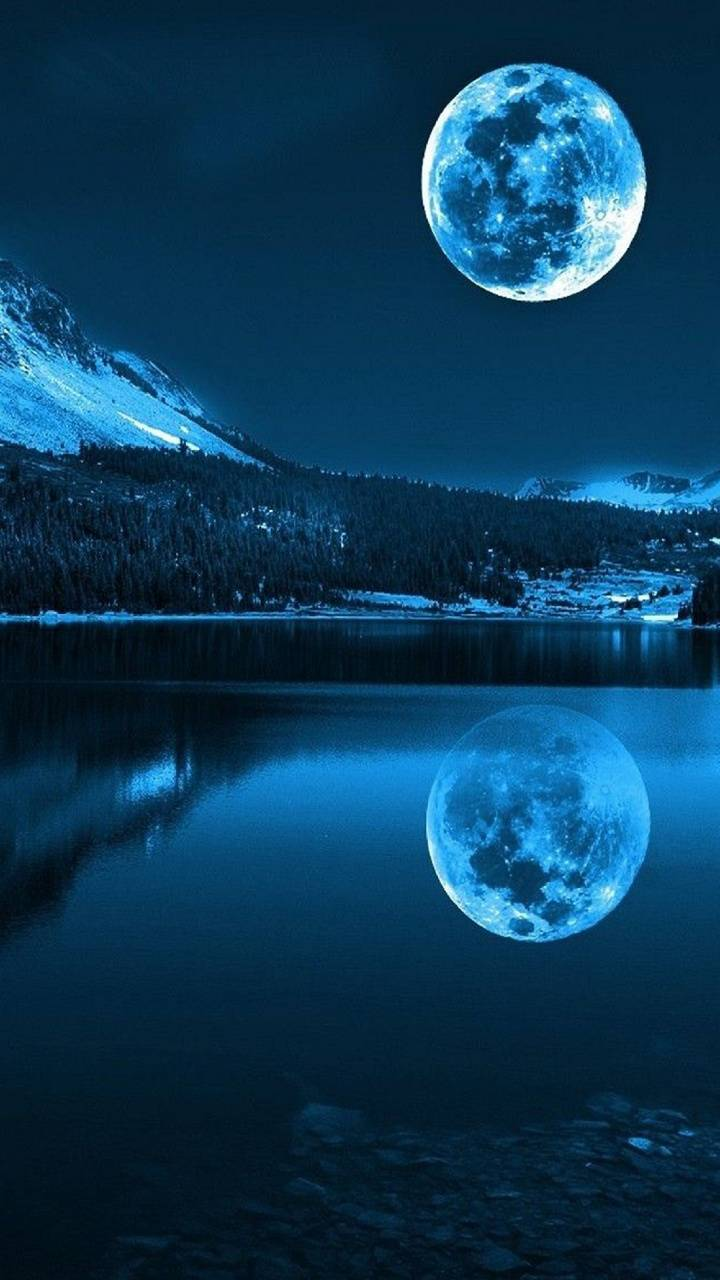 Night Moon