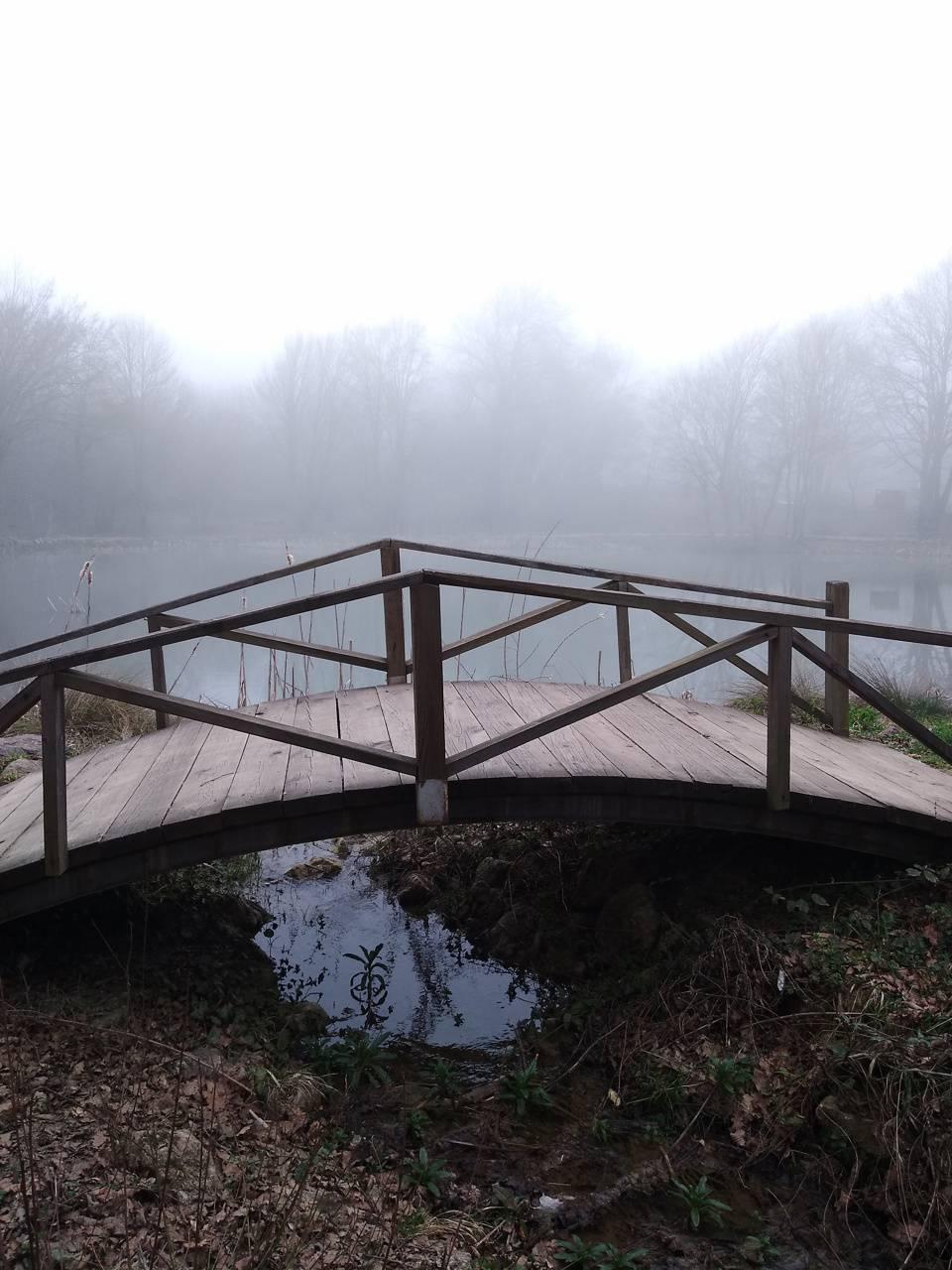 bridge full hd