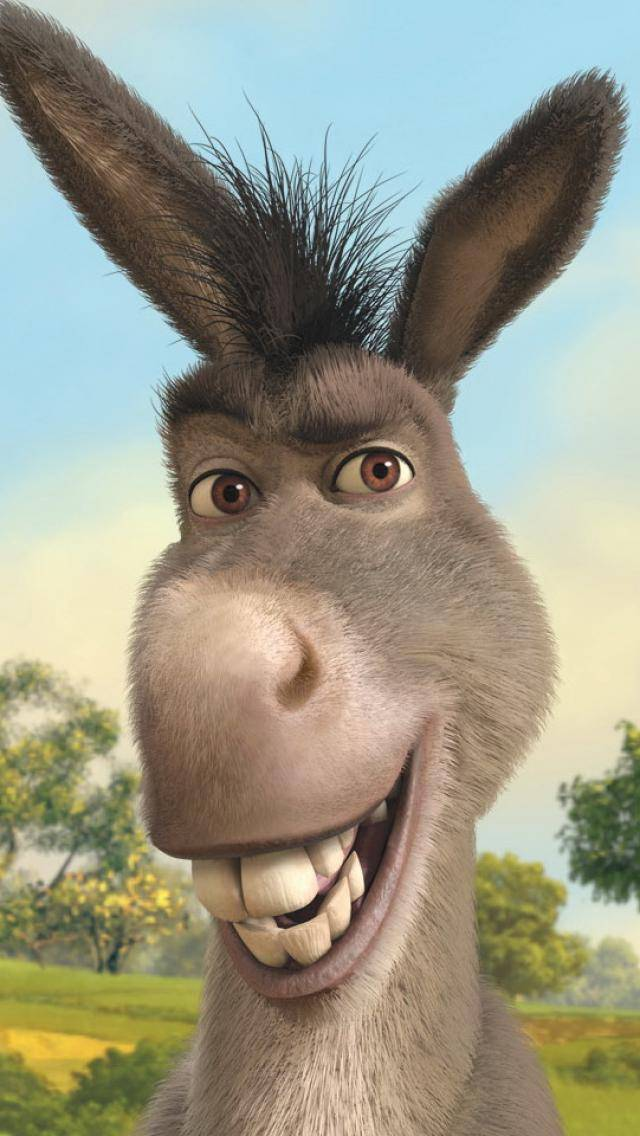 Donkey Wallpaper By Mmtari 05 Free On Zedge