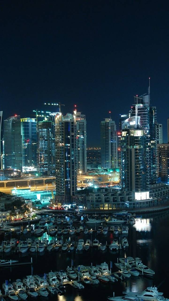 Harbour City Night