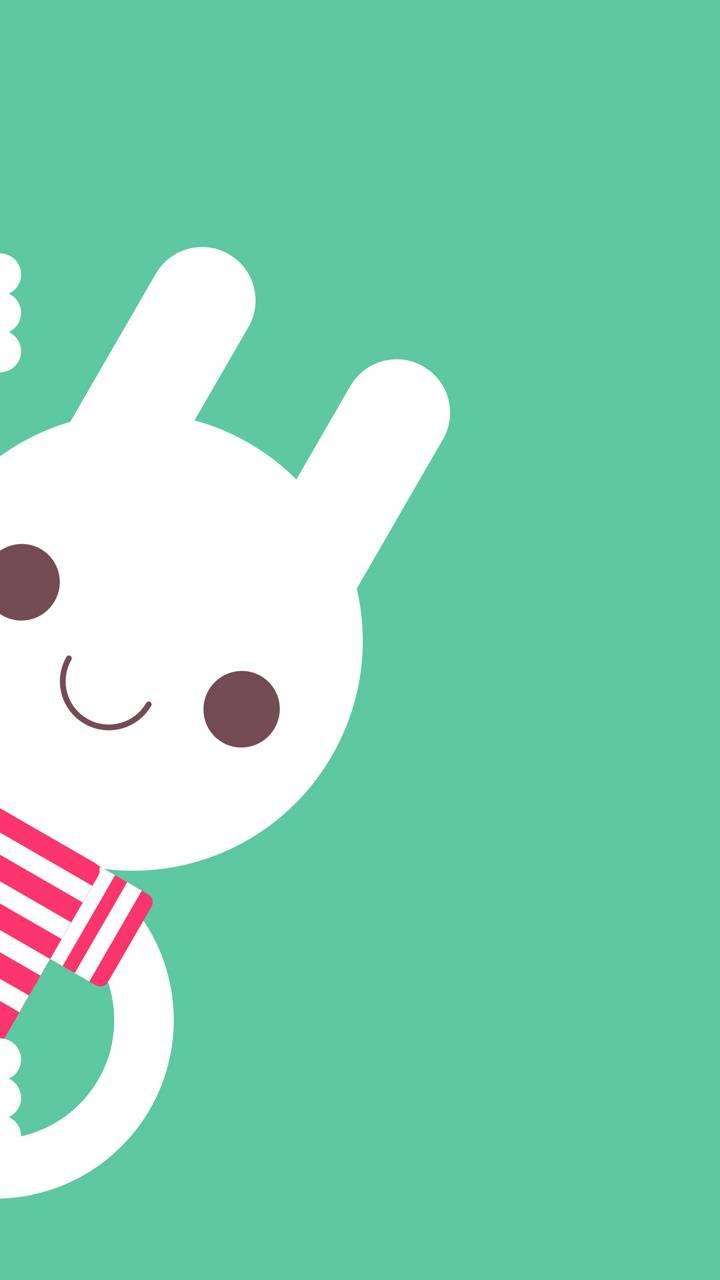 Bunny Peek