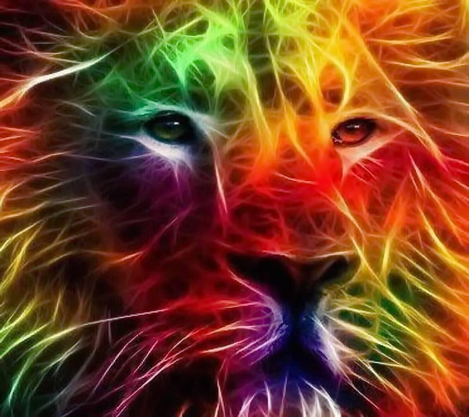 Colorful Lion Hd Wallpaper By Xlalitx 1b Free On Zedge