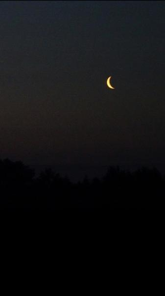 Aesthetic moon