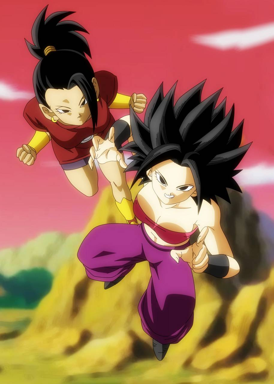 Kale And Caulifla Wallpaper By Silverbull735 6f Free On Zedge