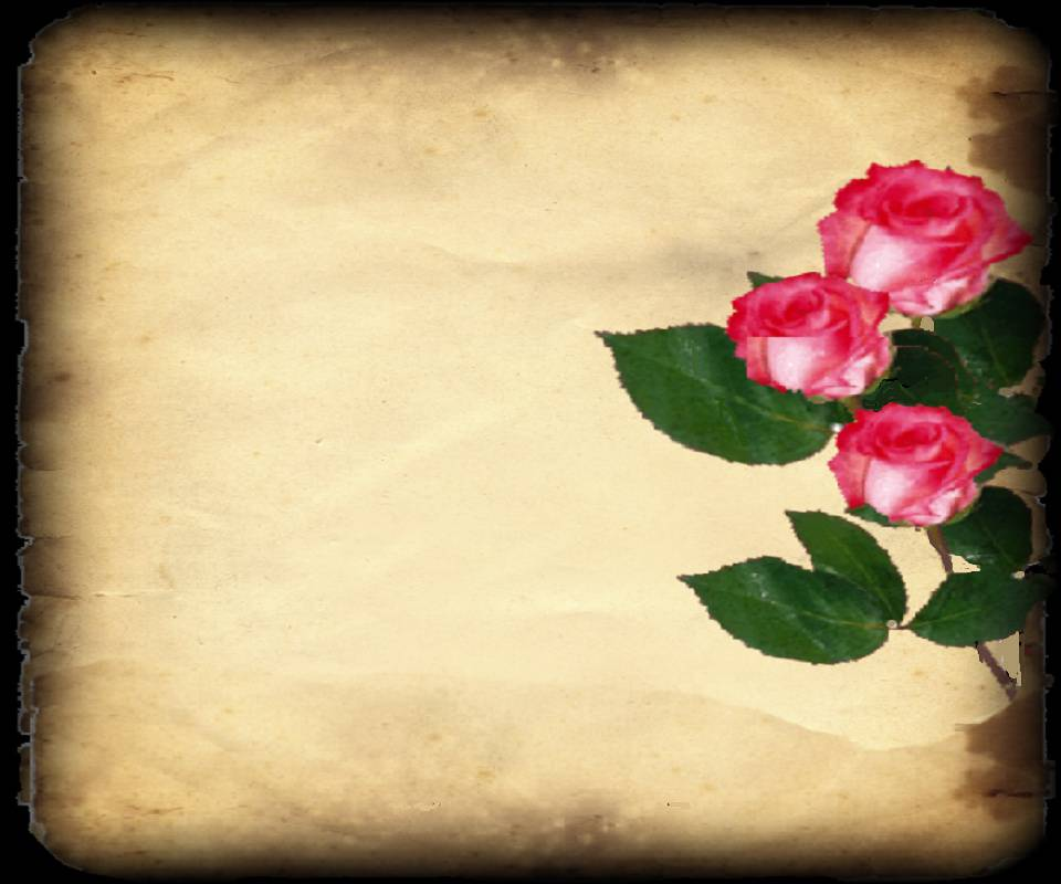 Rose Notepaper