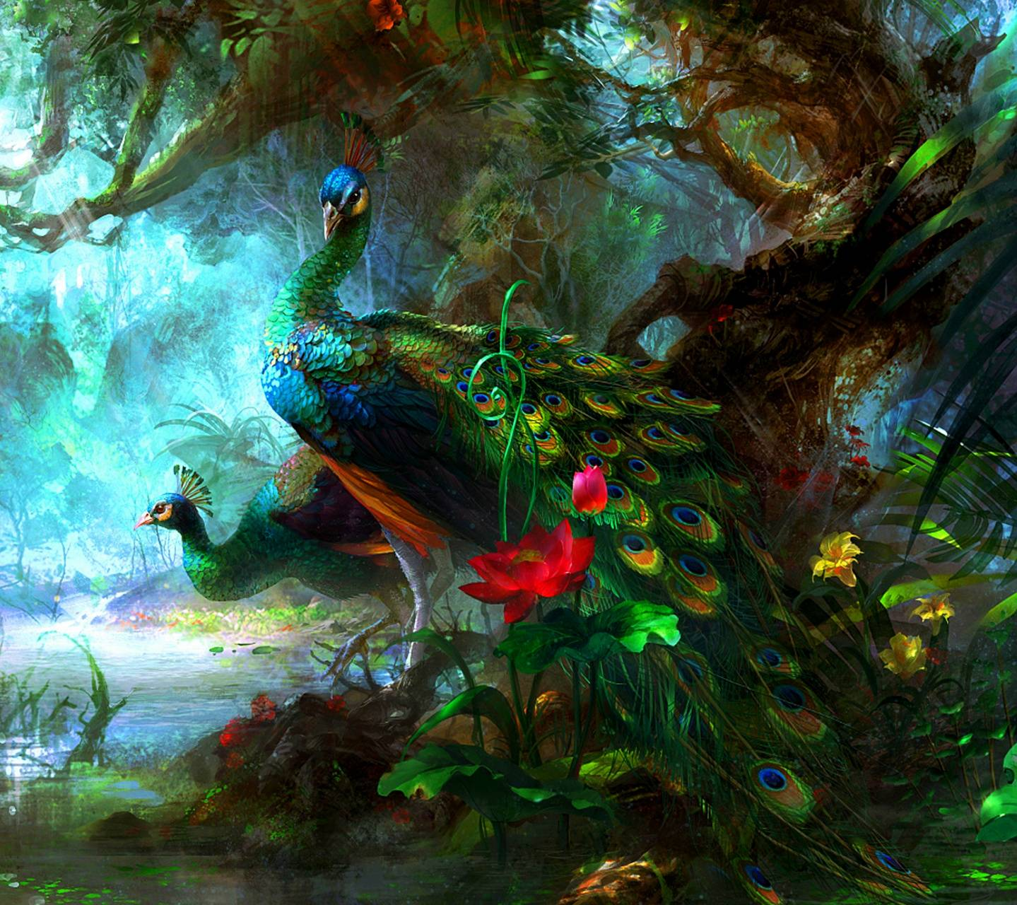 Peacock Hd Wallpaper By Mr_LazY_