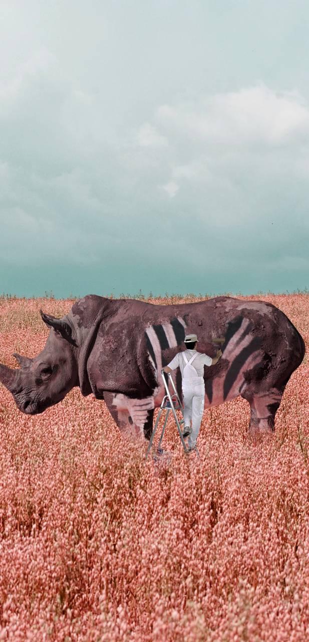 painting rhino
