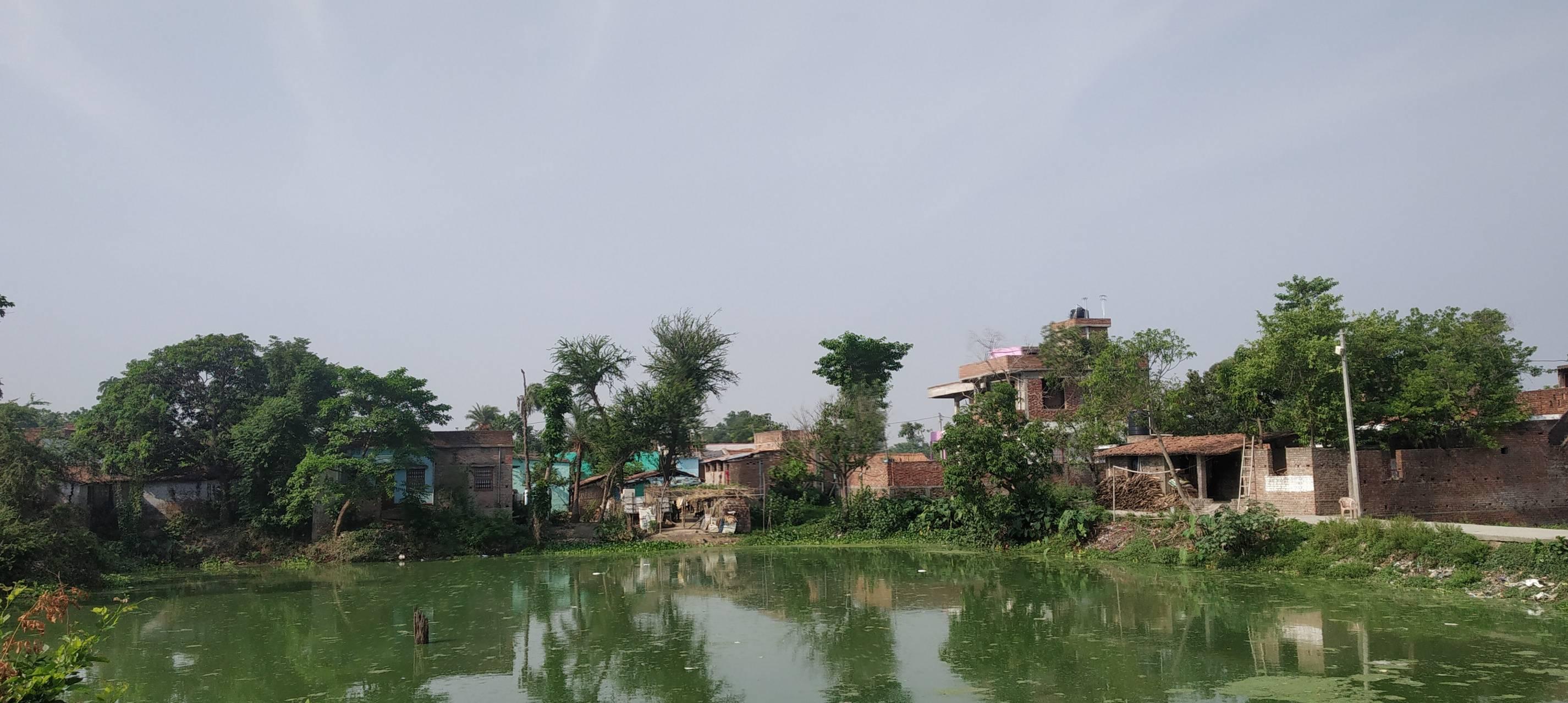 VillagePond