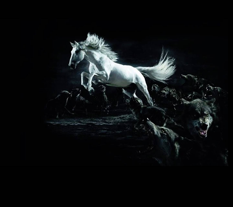 Horse Wolves