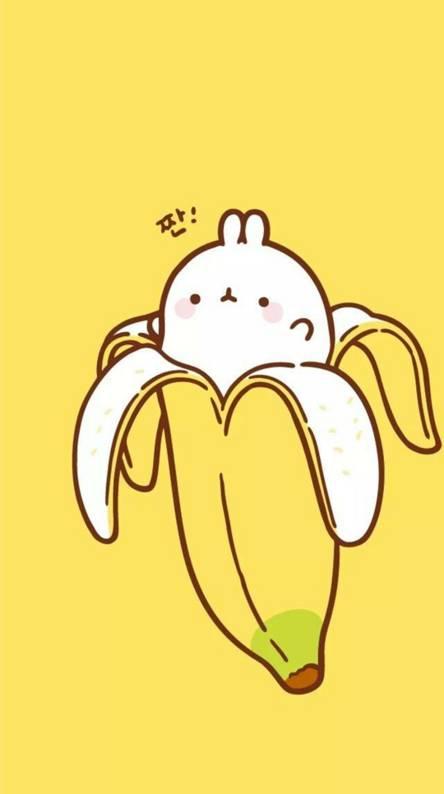 Bunny in banana