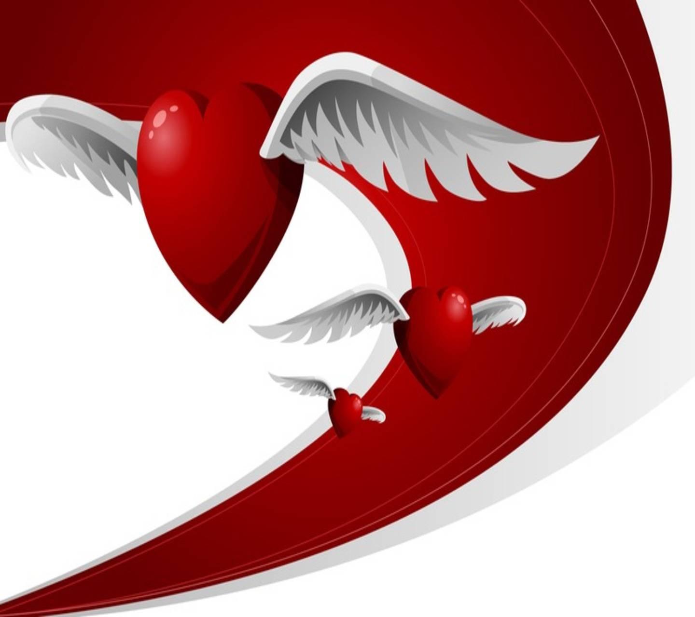 Wings Love