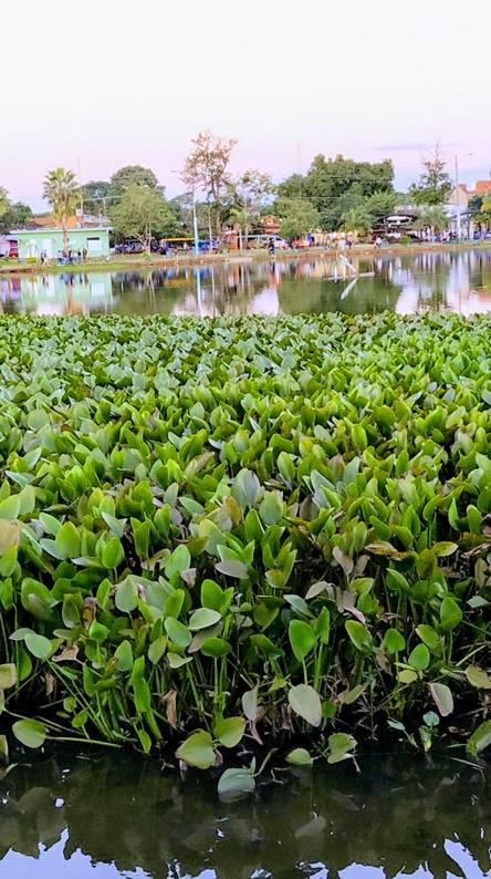Laguna de Ita