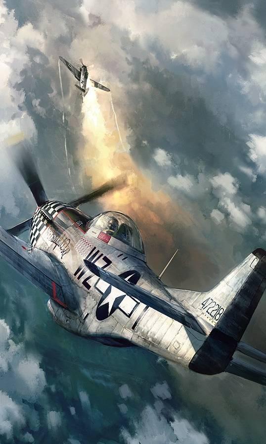 Mustang Plane