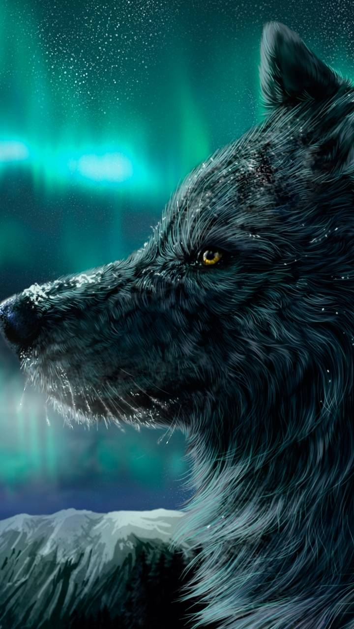 Nocturnal Wolf