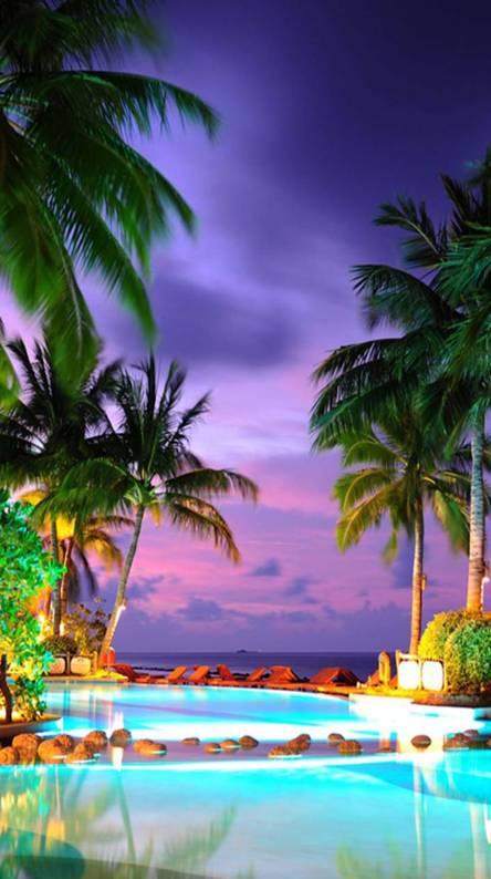 Maldives Nature