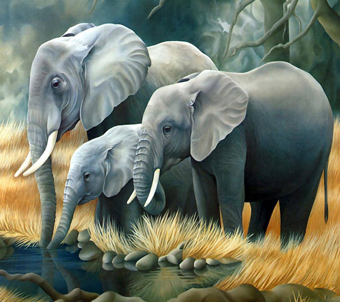 Animated Elephants