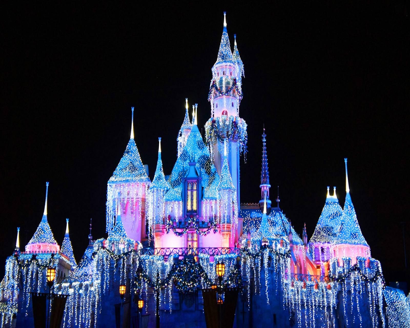 Disneyland Wonder