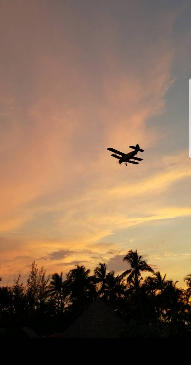 Plane Wallpaper By Skyline027 52 Free On Zedge