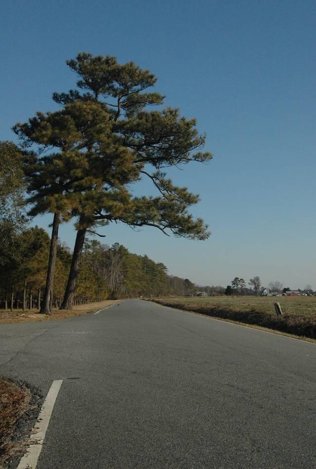 Journey Road