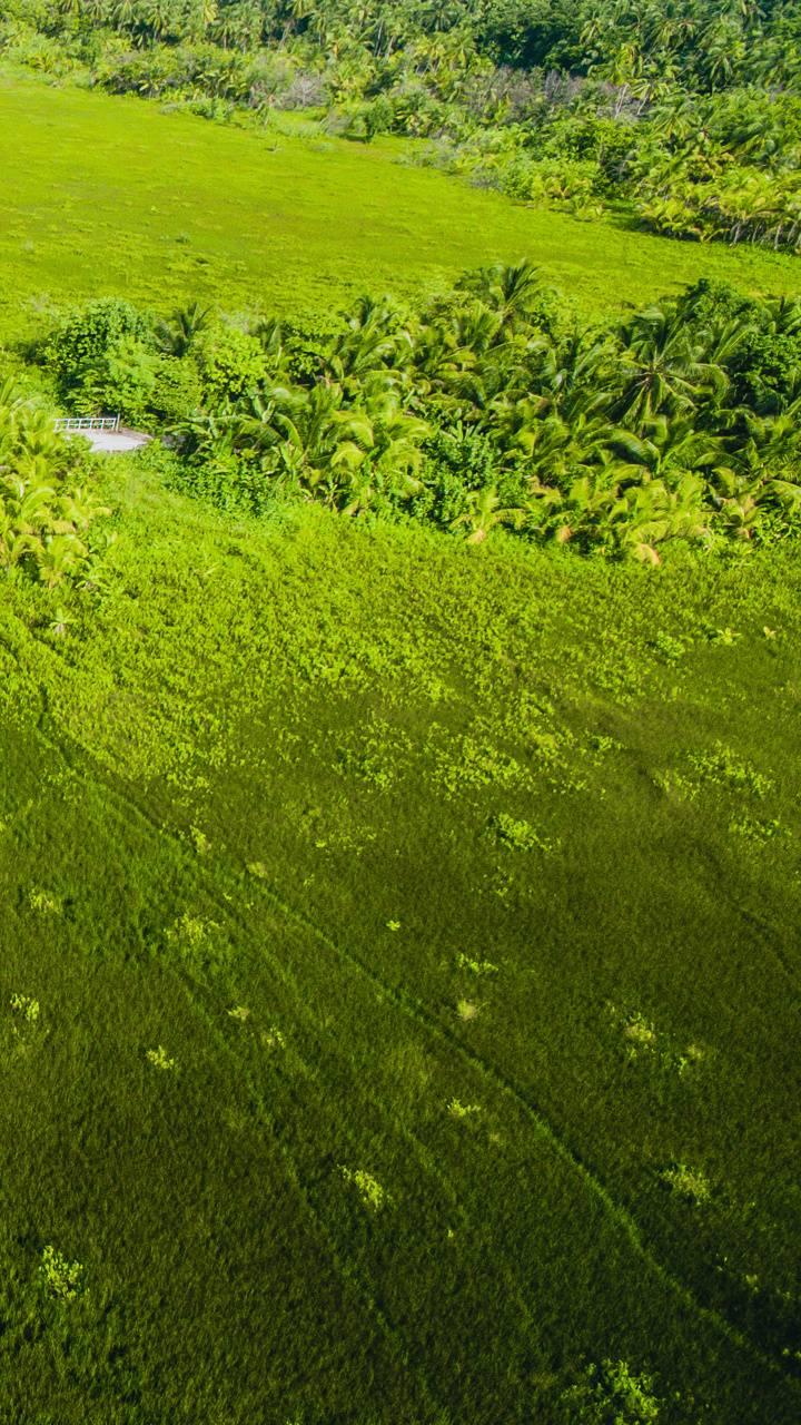 Green Maldives