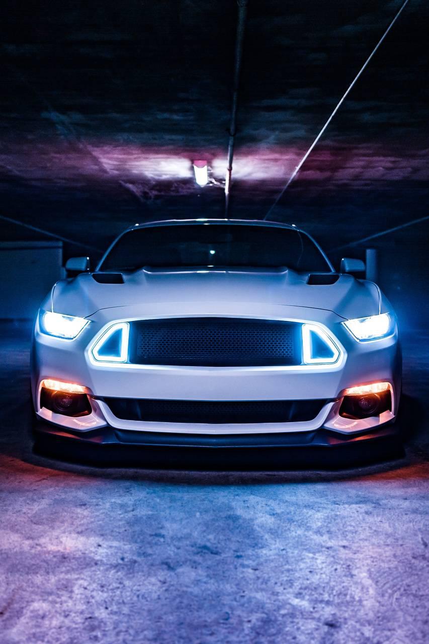 Mustang in dark