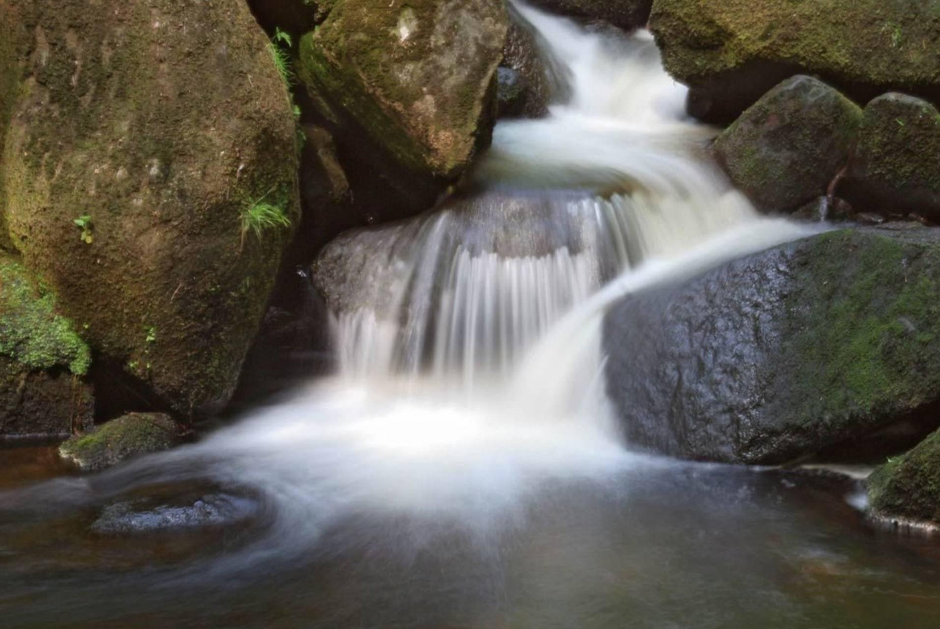 Stream And Rocks