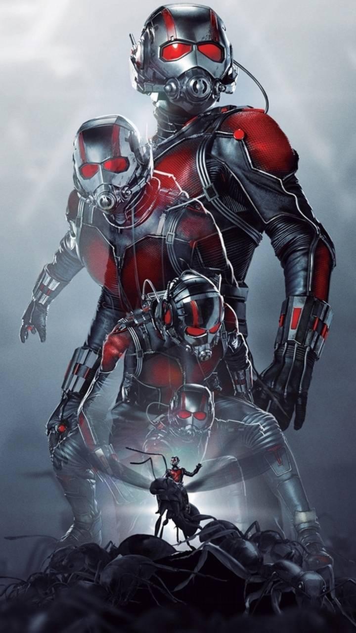 ant man