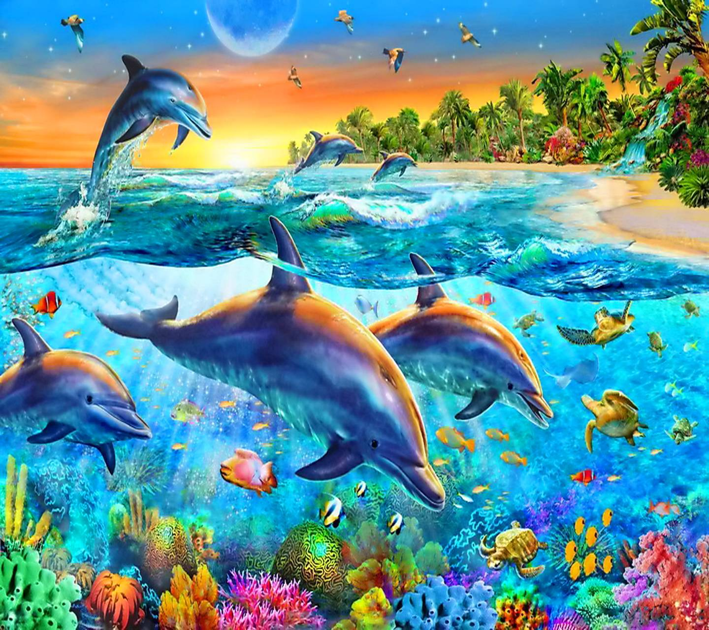 Dolphins Paradise Wallpaper by MARIKA 0d Free on ZEDGE™