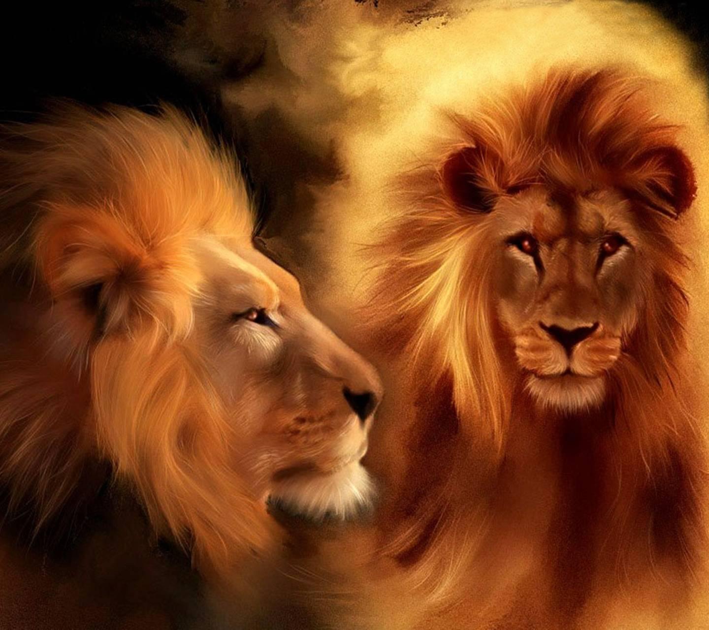 Картинка с надписью арслан, днем