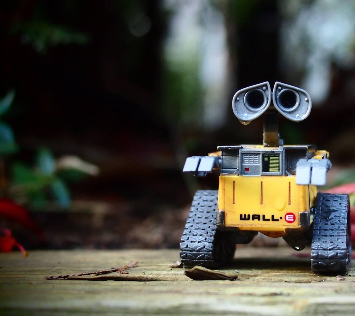 Wall Robot