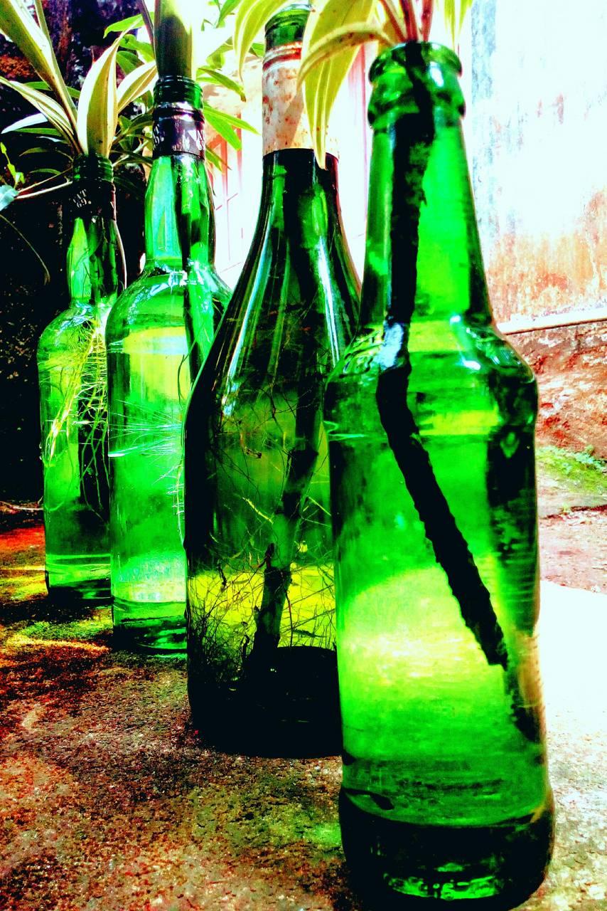 Greeny bottles