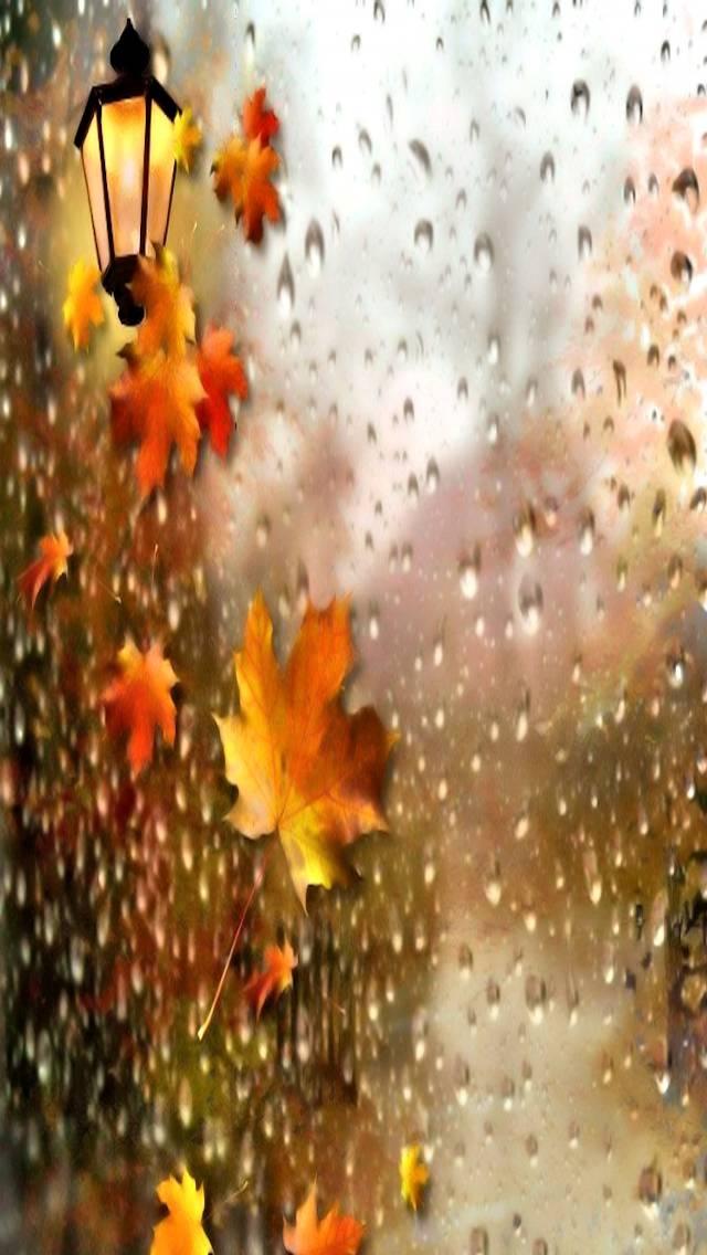Rainy Autumn Wallpaper By Savanna