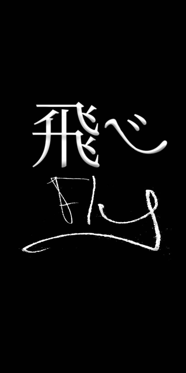 FLY KARASUNO HAIKYUU