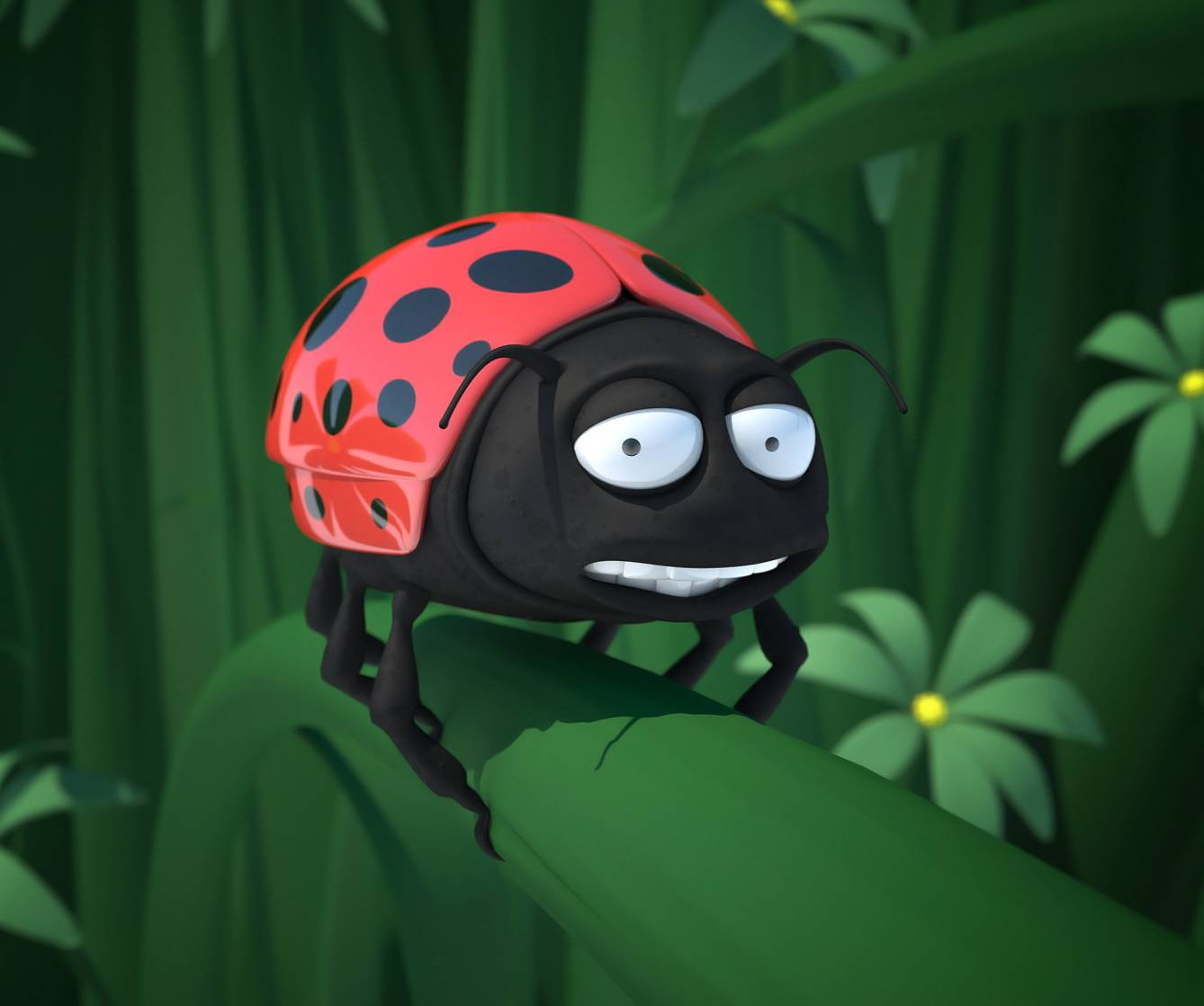 Scared Lady Bug
