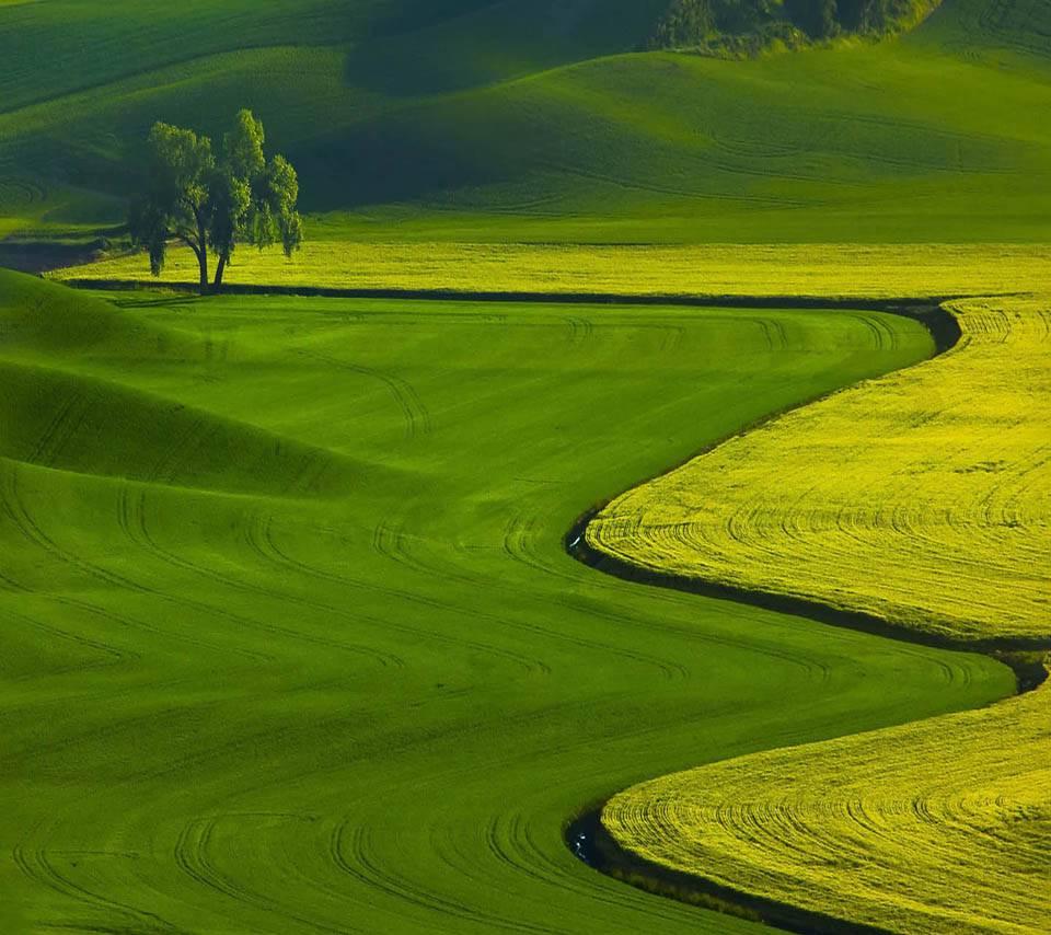 Nature Beauty Hd