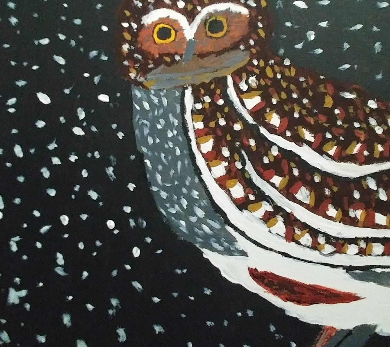 Arizona elf owl