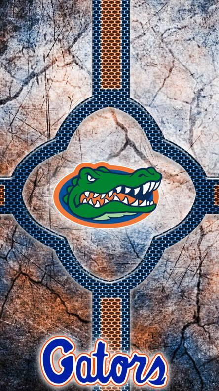 Florida Gators Tab