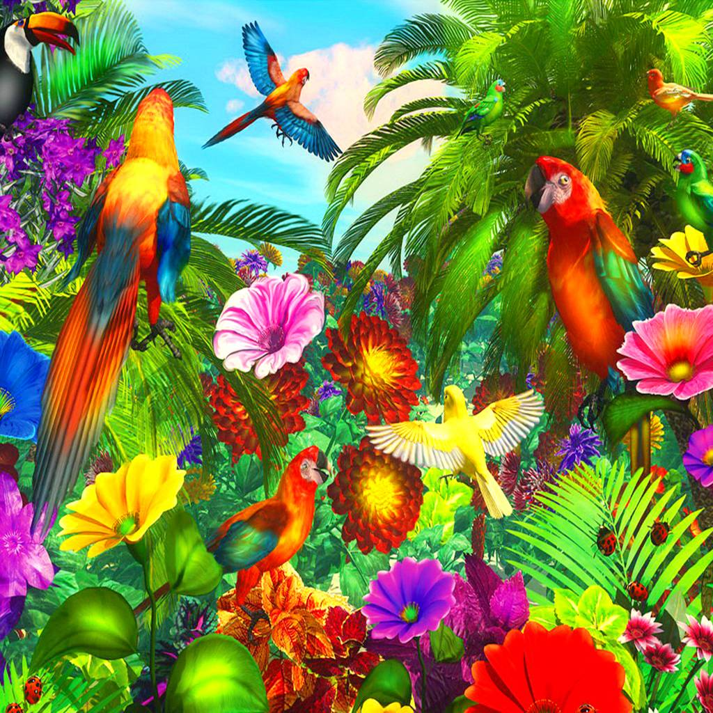 Parrot Jungle