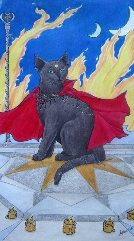 Feline Mage -magic